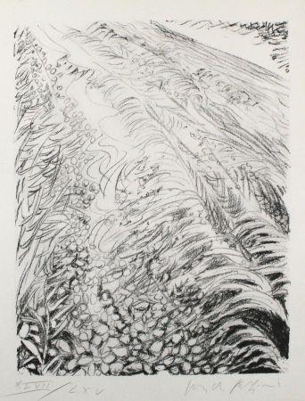 Lithograph Fazzini - Field