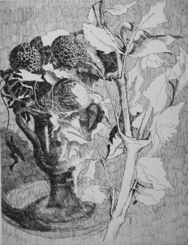 Engraving Bianchi Barriviera - Fiori e foglie bianche