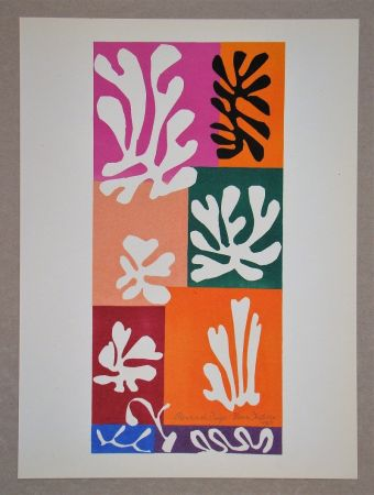 Lithograph Matisse (After) - Fleur De Neige - 1951