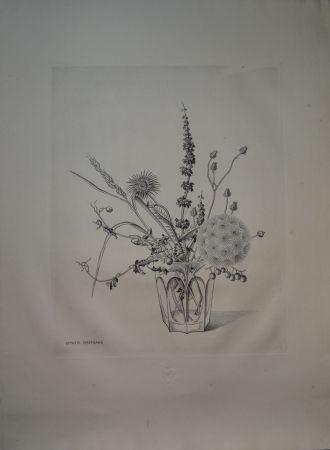 Drypoint Hasegawa - Fleurs d'automne