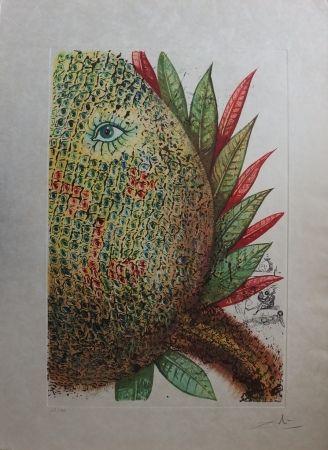Engraving Dali - Fleurs Rêvées : L'Ananas