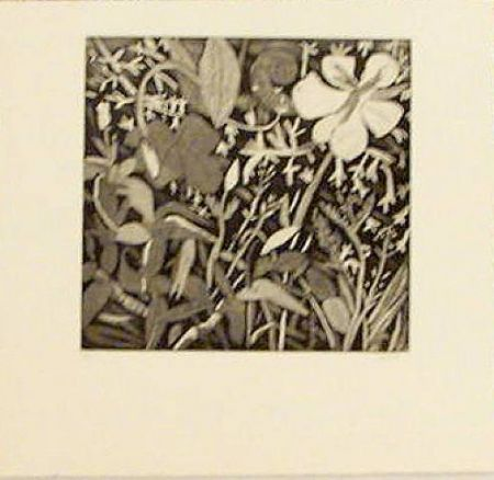 Etching Montes (De) - Floral Study