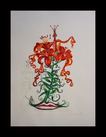 Etching Dali - Florals Tiger Lilies