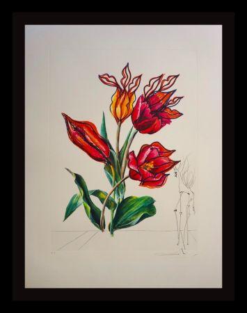 Etching Dali - Florals Tulips Girafe en Feu