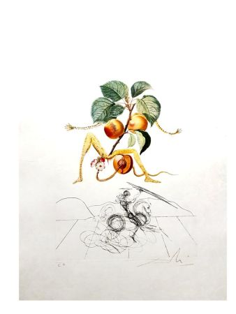 Lithograph Dali - Flordali - Abricot
