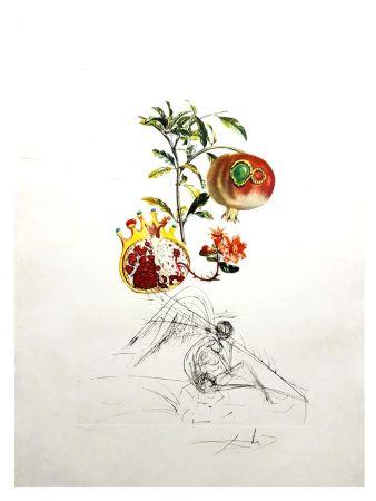 Lithograph Dali - Flordali - Ange et Grenade