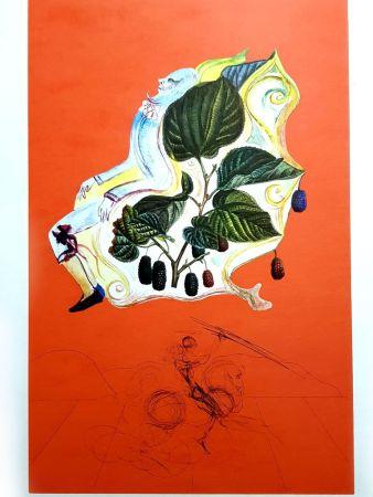 Lithograph Dali - Flordali - Mûres Sauvages