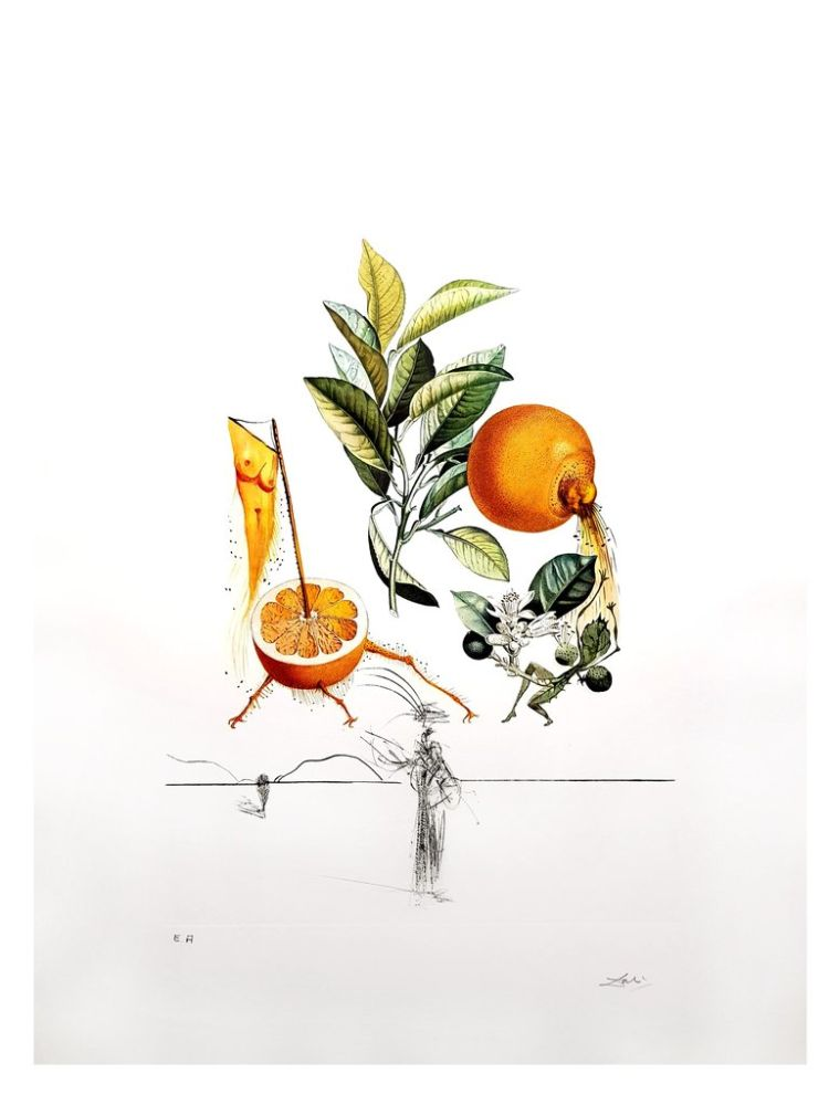 Lithograph Dali - Flordali - Orange Erotique