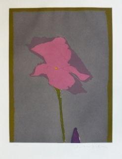 Etching Scholder - Flower at Giverney 2
