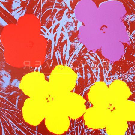 Screenprint Warhol - Flowers (FS II.71)