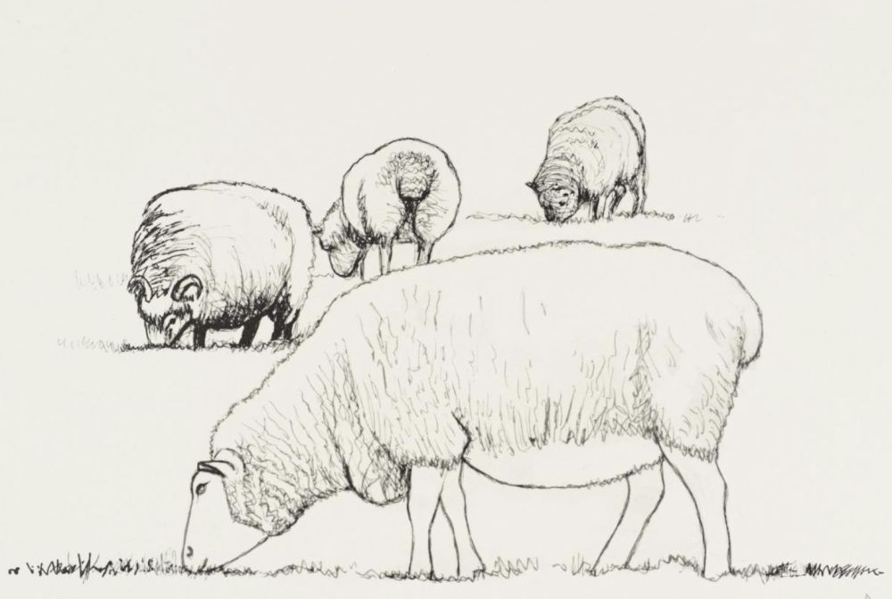 Lithograph Moore - Four Sheep Grazing