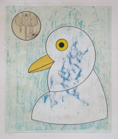 Etching And Aquatint Ernst - From oiseaux en peril