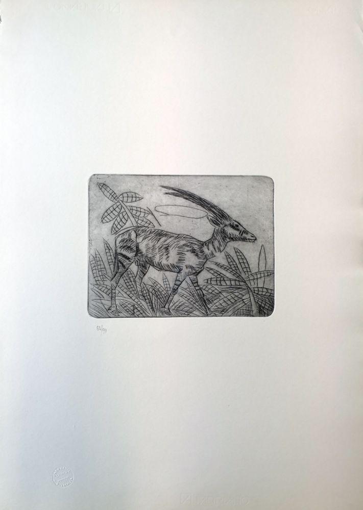 Drypoint Ligabue - Gazzella