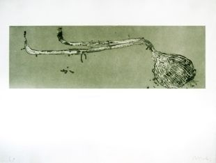 Etching And Aquatint Barcelo - Germe