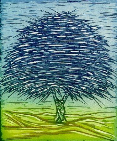 Illustrated Book Rossello - Gli alberi della memoria