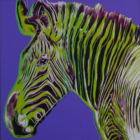 Screenprint Warhol - Grevy's zebra