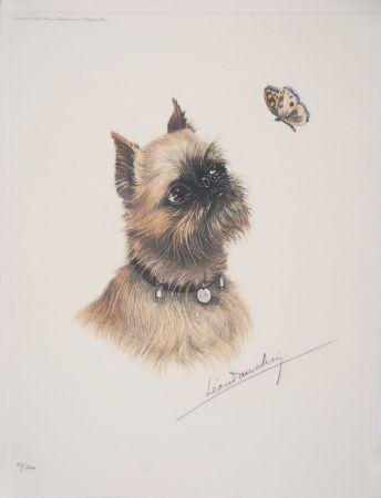 Engraving Danchin - Griffon Bruxellois et papillon - Brussel Griffon and butterfly