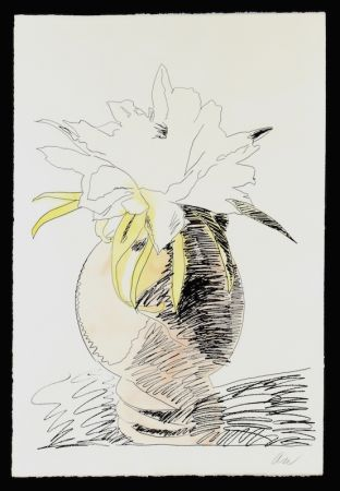 Screenprint Warhol - Hand Colored Flowers III.114