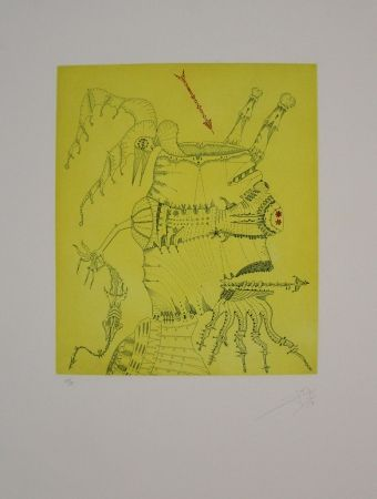 Etching And Aquatint Ponc - Homenaje a Dürer