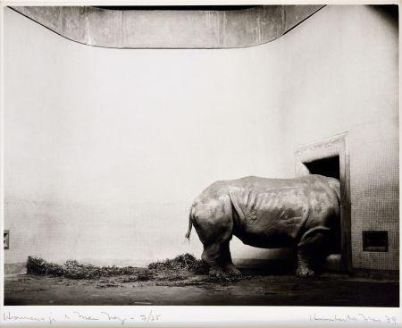 Photography Rivas - Homenaje a Man Ray