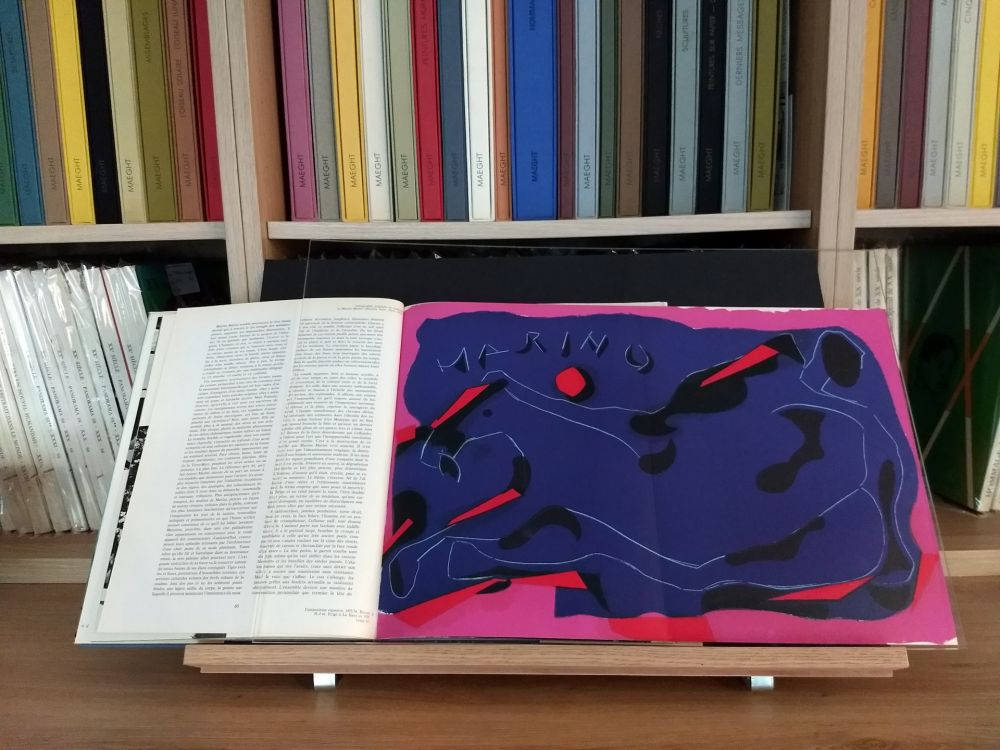 Illustrated Book Marini - Hommage