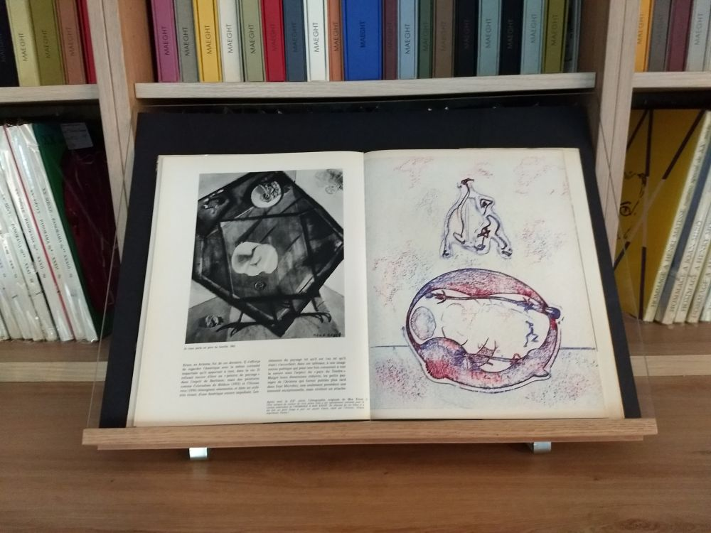 Illustrated Book Ernst - Hommage