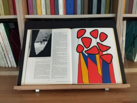Illustrated Book Calder - Hommage