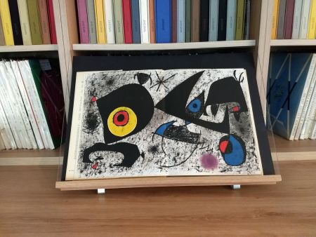 Illustrated Book Miró - Hommage