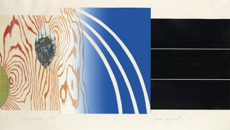 Lithograph Rosenquist - Horse Blinders (North)