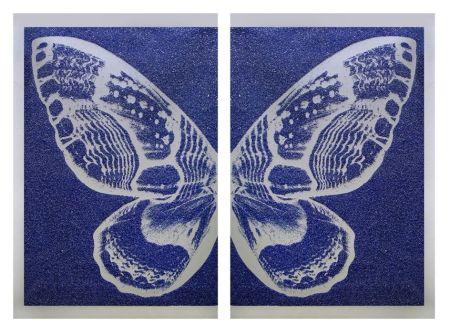 Screenprint Robierb - Hybrid Silver Butterfly l on Blue
