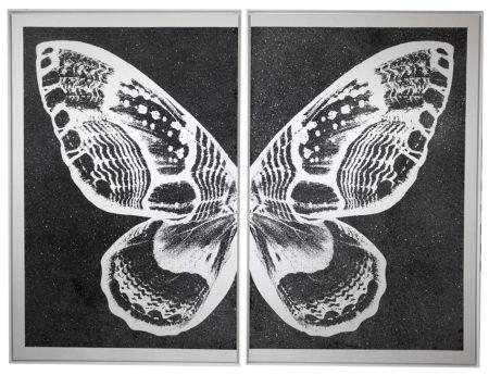 Screenprint Robierb - Hybrid Silver Butterfy II on Black