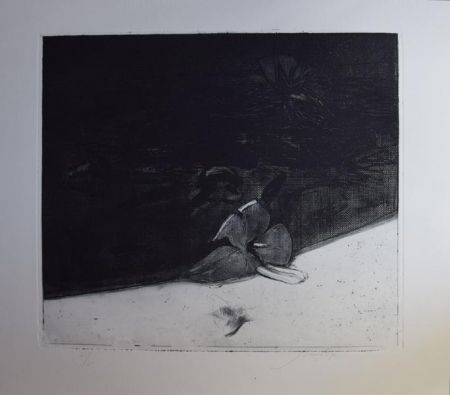 Etching And Aquatint Guccione - Ibiscus
