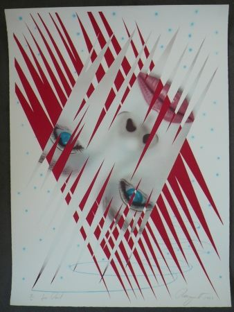 Lithograph Rosenquist - Ice Point