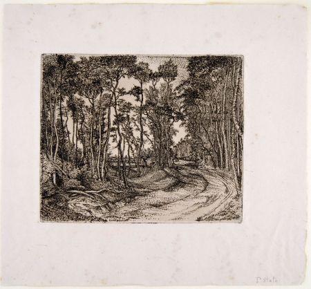 Etching Bozzetti - IL BOSCO CHE GUARDA VERSO L'ESTERNO (The forest that looks to the outside)