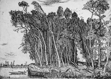 Engraving Bozzetti - Il bosco in riva al fiume: sera