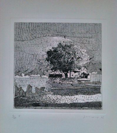 Engraving Ferroni - Il Grande Albero