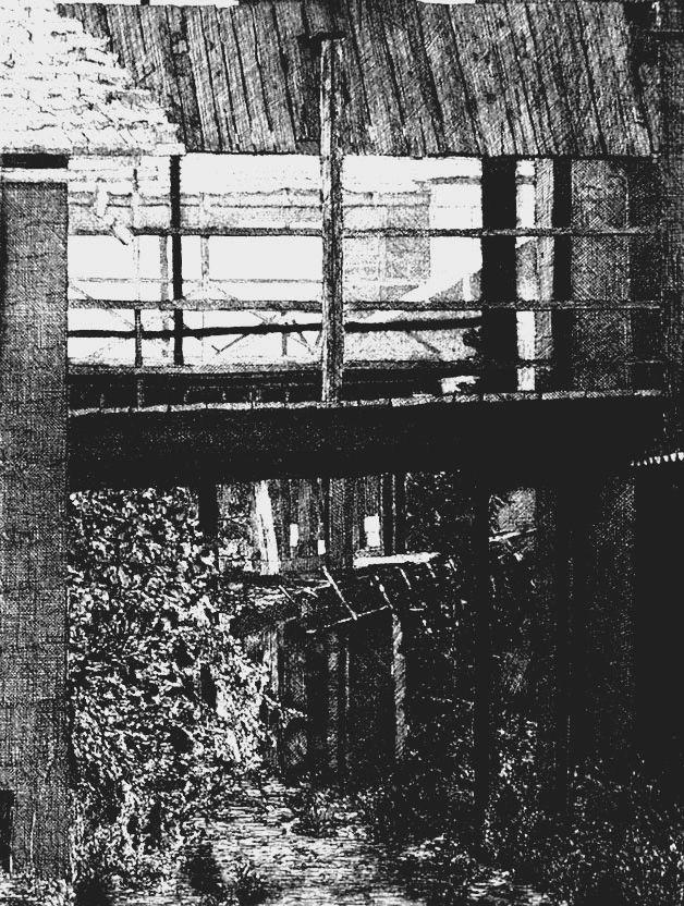 Engraving Cacciarini - Il ponte di legno