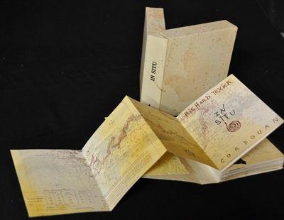 Illustrated Book Texier - In situ