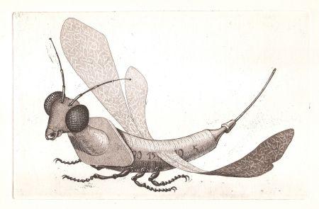 Etching And Aquatint Gondard - Incongruités. Recueil de gravures inventés...