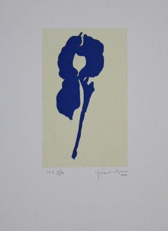 Aquatint Hernandez Pijuan - Iris Blau Viii / Blue Iris Viii