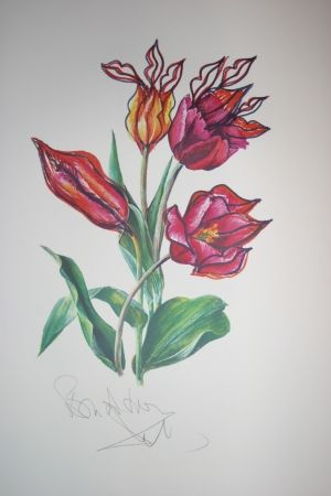 Lithograph Dali - Kissing Tulips (surrealistic flowers)