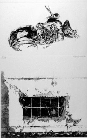 Engraving Vespignani - La carcassa - Finestra sul cortile