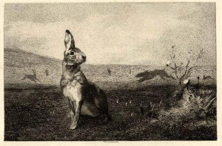 Etching Bracquemond - La lièvre (The Hare)
