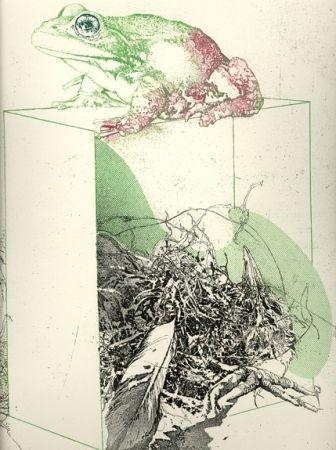 Etching And Aquatint Saroni - La rana sulla scatola