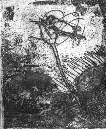 Engraving Bartolini - La rosa