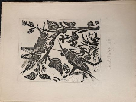 Aquatint Picasso - La sauterelle