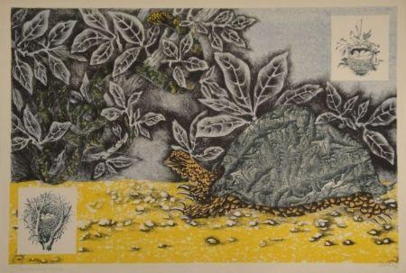 Lithograph Lurcat - La Tortue