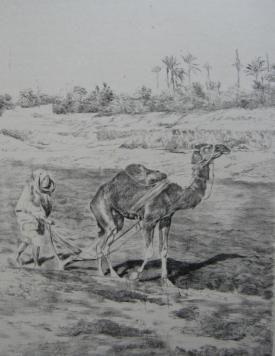 Lithograph Lunois - Laboureur du Kef