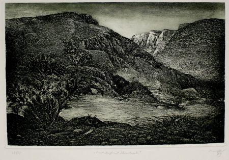 Etching And Aquatint Müller - Landschaft mit Strauchwerk / Landscape with Bushes