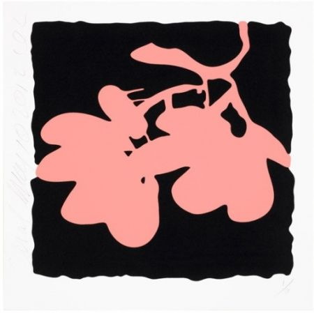 Screenprint Sultan - Lantern Flowers, May 10, 2012 (Coral)